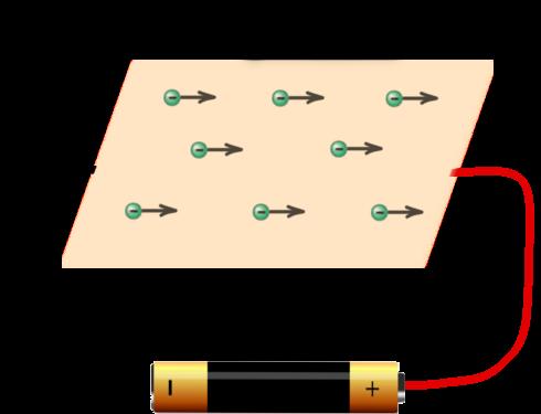 przewodnik1